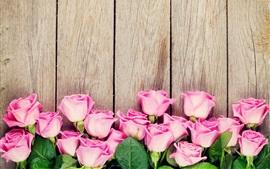 壁紙のプレビュー ピンクのバラ、木の背景