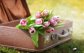 Preview wallpaper Pink tulips, suitcase