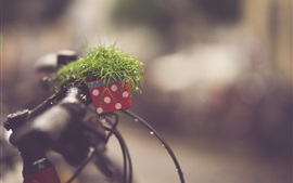 Preview wallpaper Plants, bike, rain