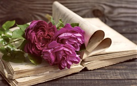 Preview wallpaper Purple peonies, book