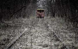 Preview wallpaper Railroad, trees, train