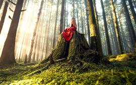 Red skirt girl sit on stump, forest