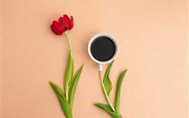 Preview wallpaper Red tulip, one cup coffee
