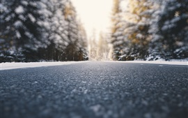 Preview wallpaper Road, ground, trees, snow, winter, blurry