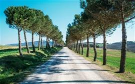 壁紙のプレビュー 道路、樹木、田舎