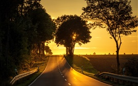 Preview wallpaper Road, trees, sunset, slope