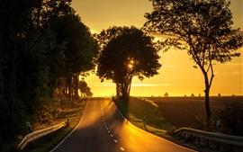 Дорога, деревья, закат, склон