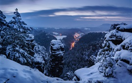 Saxon Switzerland National Park, Germany, trees, snow, winter