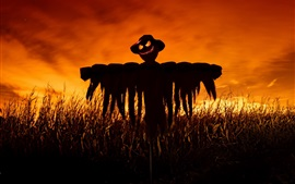 Preview wallpaper Scarecrow, fields, night, red sky