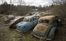Preview wallpaper Scrap cars