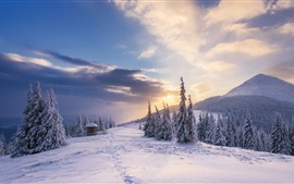 Neve, montanhas, árvores, cabana, nuvens, por do sol