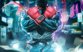 Preview wallpaper Street Fighter 5, classic games
