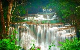 Tailandia, cascada, árboles, bosque