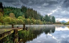 Деревья, облака, озеро, пирс, туман