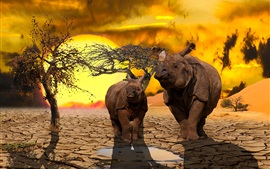 Preview wallpaper Two rhinos, dry ground, tree, sunset
