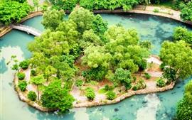 Vietnã, Ninh Binh, jardim tropical, lagoa, arbustos