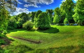 Preview wallpaper Wetzlar, Germany, trees, grass, green