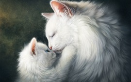 White cats, mom and kitten