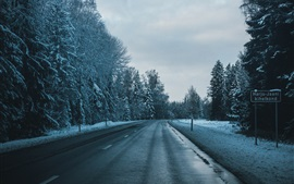 Preview wallpaper Winter, road, trees, snow, dusk