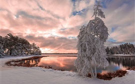 Preview wallpaper Winter, snow, lake, trees, clouds, dusk