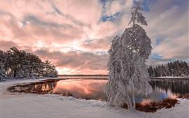 Inverno, neve, lago, árvores, nuvens, crepúsculo
