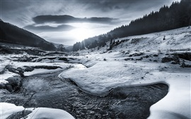 Preview wallpaper Winter, snow, river, trees, sun rays, black and white picture