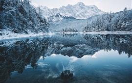 Preview wallpaper Winter, trees, snow, lake, water splash