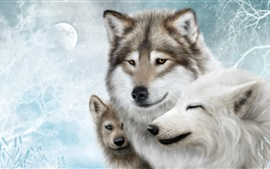 Wolf family, moon, snow, winter