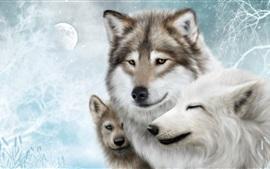 Lobo família, lua, neve, inverno