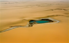 Aperçu fond d'écran Afrique, Niger, désert, oasis, eau