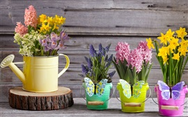 Preview wallpaper Beautiful flowers, hyacinth, daffodils, crocuses