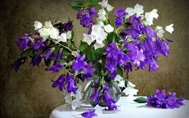 Preview wallpaper Bells flowers, white and purple