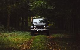 Aperçu fond d'écran Vue de face de Jeep noir, arbres