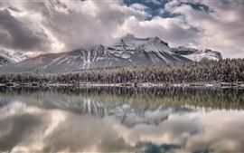 Канада, Альберта, озеро, горы, деревья, снег, зима