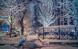 Preview wallpaper Chicago, Illinois, winter, snow, trees, street, city night, USA