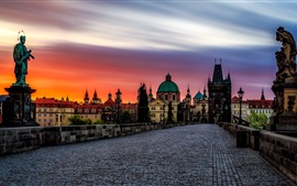 Czech Republic, Prague, Charles bridge, statue, houses, sunset