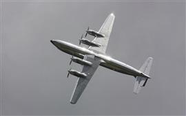 Preview wallpaper Douglas DC-6B plane