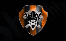 Aperçu fond d'écran Emblème, crâne, fond noir