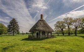 Inglaterra, Bedfordshire, casa, parque, árvores, grama