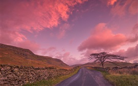 Preview wallpaper England, road, tree, clouds, sunset, sky