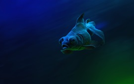 Preview wallpaper Fish, sea, underwater