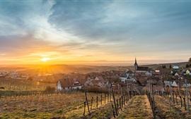 Preview wallpaper France, Alsace, Blienschwiller, houses, fields, sunshine
