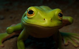 Preview wallpaper Green frog front view, eyes