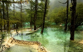 Preview wallpaper Jiuzhaigou National Park, pond, water, trees, fog, China