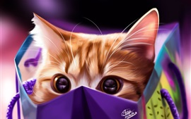 Preview wallpaper Kitten in package, art picture