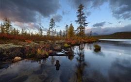 Kolyma, Jack London Lake, árboles, otoño