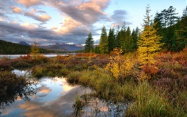 Preview wallpaper Kolyma, mountains, trees, grass, river, autumn