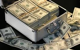 Mucho dinero, dólares estadounidenses