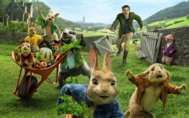 Peter Rabbit, cartoon movie