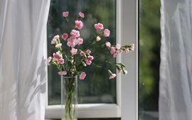 Preview wallpaper Pink carnation, flowers, vase, window